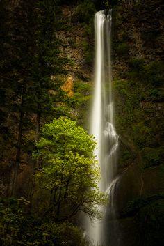 """tulipnight: """" Multnomah Falls by LukeDetwiler on Flickr. """""""