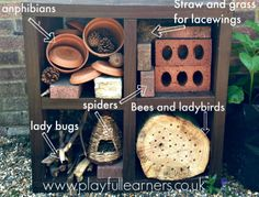 How to make a bug hotel: Playful Learners
