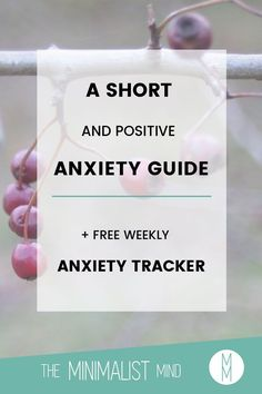 Do you want to be fearless while having anxiety? Let me help you out with this short guide on anxiety! Don't forget to download your Weekly Anxiety Tracker:
