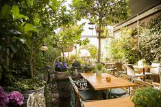 This garden is so secret that we almost didn't find it. El Jardín Secreto is well hidden on a roof, right in the center of Madrid. Bares Y Pubs, Terrazas Chill Out, Madrid Restaurants, Rustic Restaurant, Garden Cafe, Living Room Green, Secret Places, Andalucia, Book Of Life