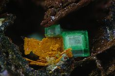 Torbernite, Zeunerite - Clara Mine, Rankach valley, Oberwolfach, Wolfach, Black Forest, Baden-Württemberg, Germany FOV : 2 mm
