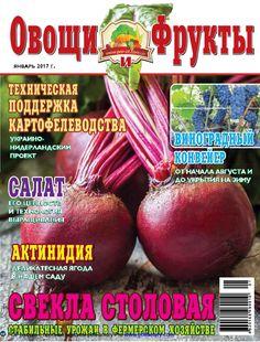 """""""Овощи и фрукты"""", январь 2017"""