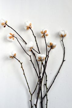 DIY Cotton Stems from Pistachio Shells