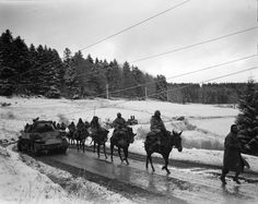 War in the snow and ice - French Goumiers advance in the Alsace countryside. Dec 44 (137.07 KiB)
