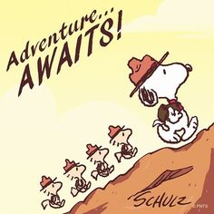 Snoopy and Woodstock Snoopy Beagle, Camp Snoopy, Snoopy And Woodstock, Charlie Brown Christmas, Charlie Brown And Snoopy, Christmas Carol, Snoopy Pictures, Snoopy Quotes, Peanuts Quotes