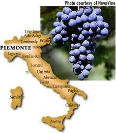 Piedmonte - Home of Barbera Wines
