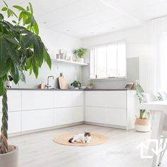 Super ideas for kitchen white modern ikea dining rooms Kitchen Interior, New Kitchen, Kitchen Dining, Kitchen Decor, Kitchen White, Modern Ikea Kitchens, Home Kitchens, Ikea Dining Room, Ikea Kitchen Cabinets