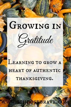 Authentic Thanksgiving is a choice. Gratitude takes effort. May we have eyes that see and a heart that truly appreciates all we have to be grateful for.