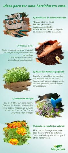 Horta em casa! Over The Garden Wall, Love Garden, Herb Garden, Vegetable Garden, Organic Gardening, Gardening Tips, Green Life, Plantar, Growing Plants