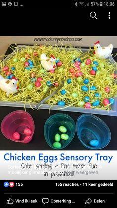Er wordt een schaaltje voorzien waarin stro, kipjes en paaseitjes liggen. We voorzien ook bakjes in de kleuren van de paaseitjes. Het is de bedoeling dat de kinderen de paaseitjes zoeken en in het juiste keur bakje leggen. Hierbij wordt de sensomotoriek gestimuleerd. Farm Activities, Toddler Learning Activities, Montessori Toddler, Easter Activities, Toddler Play, Montessori Activities, Farm Crafts, Preschool Crafts, Easter Crafts