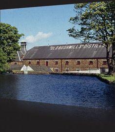 Bushmills Distillery in Northern Ireland