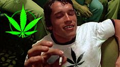 A Lifter's Guide To Marijuana,  by Dr. Jade Teta #marijuana #weed #fitness
