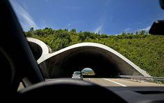 Grünbrücke für Wildtiere, A8 bei Aichelberg, Schwäbische Alb, Bad Boll, Baden-Württemberg, photo: picture alliance