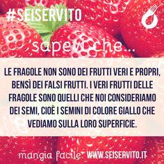 Le fragole non sono i frutti veri e propri, bensì dei falsi frutti... #SeiServito #MangiaFacile www.seiservito.it