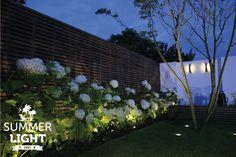 In de reeks SUMMER LIGHTS deze sfeervolle tuin met daarin buitenspot MINI SCOPE om de annabellen uit te lichten, grondspot NERO om de boom uit te lichten en wandlamp CURV tegen de witte muur.