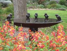 Beautiful sculptured bird bath