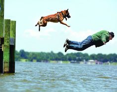 King George K-9 trainer puts together movie on training police dogs need. Photographs by Dawn Norris/Canines on Duty.