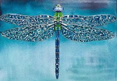 Sam Cannon, Illumination Art, Dragonfly Art, Realistic Paintings, Pen And Watercolor, Samar, Whimsical Art, Online Gallery, Art Techniques