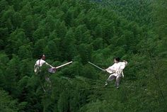 crouching tiger hidden dragon - Google Search