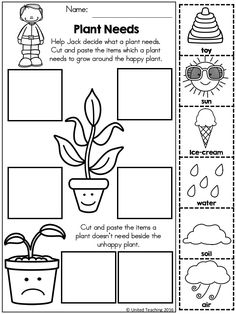 Plant Needs >> Help Jack decide what a healthy plant needs!