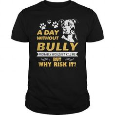 Awesome Tee A Day without BULLY Why risk it T shirts