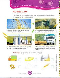 Spanish Teaching Resources, Sistema Solar, Elementary Education, Science And Nature, Layout, Geography, Teaching, Primary School, Geography Activities