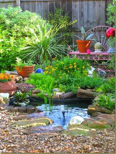 Small pond scapes on pinterest small ponds garden ponds for Small garden pond with fountain