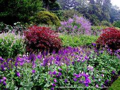 Longwood Gardens Tour ~ Flower Garden Walk