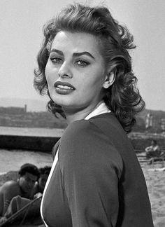 gatabella:  Sophia Loren