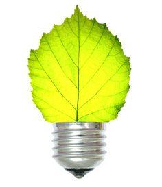 Green Energy - Solar Energy, Generators, Solar Panels ...