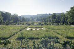 Ryffel + Ryffel Landschaftsarchitekten, Uster. Kunst: Anna-Marie Bauer, Bildhauerin Zürich Vineyard, Anna, Outdoor, Landscape Architects, Art, Vine Yard, Outdoors, Vineyard Vines, Outdoor Games