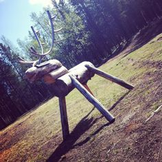 I must admit.. I had an entirely different idea about how reindeers looked  #reindeer #artsy #woodwork #handcraft #sights #tourism #exploring #adventure #outandabout #travel #travelling #travelgram #finland #inari #siida #visitinari #visitfinland #placestogo #placestosee de bjergepoulsen