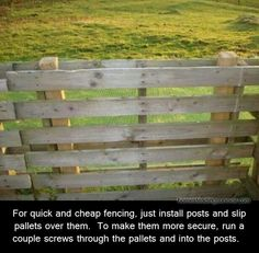 Easy DIY Fences How to Build a Fence Pallet slipped over fence posts for quick fencing. Great for a fast patio fence or even dog containment. The post Easy DIY Fences How to Build a Fence appeared first on Pallet Diy. Building A Fence, Building A Chicken Coop, Building Homes, Outdoor Projects, Pallet Projects, Pallet Ideas, Woodworking Projects, Diy Fence, Patio Fence