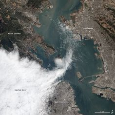 For some people, the relentless waves of fog that roll off the Pacific Ocean into San Francisco each summer inspire awe. For others, they arouse frustration, even depression. Either way, fog is simply a fact of life for San Franciscans, particularly those who live near the Golden Gate Bridge.