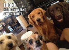 Every time I eat something...or they think I'm eating something. - ...