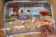 Super cute flower planting math activity.