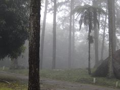 Serrinha,RJ