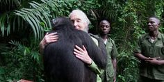 Jane Goodall & a rescue chimp. This mo9ved me to tears.