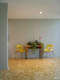 Image detail for -Shiny new OSB floor, gray walls, freshly painted ceiling