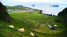 Bildergebnis für westman island