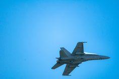 C/D Hornet by Graziella Serra Art & Photo on