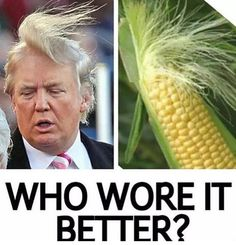 Funny Donald Trump Memes That Make 2020 Not Appear To Be So Far - 31 Pics
