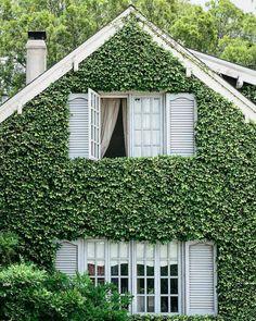 49 Ideas For House Small Facade Home Outdoor Spaces, Outdoor Decor, Outdoor Living, Ivy House, House Goals, Exterior Design, Facade, Beautiful Homes, Modern Design