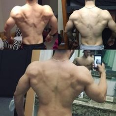 Some more back progress! This was always a weak body part for me. 1st pic is about 1.5 years ago 2nd pic about 9 months ago and most recent on the bottom. Been focusing mainly on adding mass to the lats. I trained back all wrong for years using mostly traps and other upper back muscles to move most of the weight in all my rows using too much momentum and jerking. Since following @ifbbbenpak and @hypertrophycoach about a year ago my lats have blown up! You def need heavy weight to build a big…