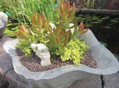 Make creative flowerpots using papercrete | Dallas Morning News
