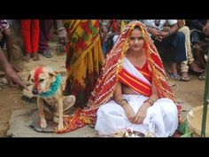 Indian Girl Is Forced To Marry A Dog By Her Family And The Village. Crazy! | Superstar Magazine