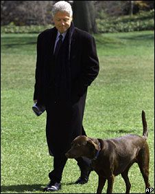 pictures buddy lab whitehouse   Bill Clinton and chocolate Labrador Buddy at the White House in 1999