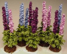 Delphinium kits form All Things Small,     $25.00       Shown above in Dark Purple, Light Blue, Lavender, and a Mixed cluster of all three colors.