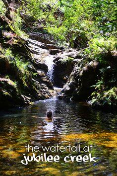 The Waterfall at Jubilee Creek  #OrdinaryExtraordinaryNet #OrdinaryExtraordinaryNetTravel #Africa #SouthAfrica #GardenRoute #KnysnaForest #Knysna #TsitsikammaForest #Tsitsikamma #CirclesInAForest #KringeInNBos #FielasChild #FielaSeKind #TheseBootsAreMadeForWalking #Waterfall #Forest #JubileeCreek