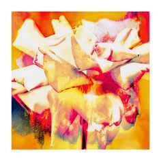 Bring gallery-worthy appeal to your home with this eye-catching canvas print, showcasing a floral motif in vibrant yellow.    Product: